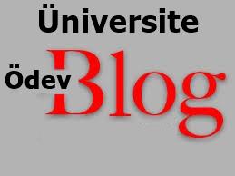 üniversite ödev blog